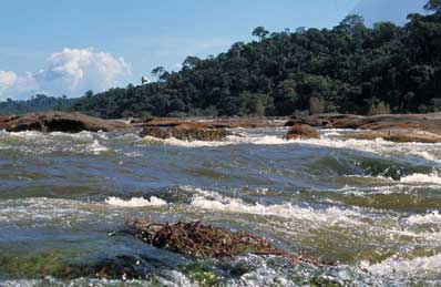 Xingu River rapids. Courtesy of Monti Aguirre/IRN.